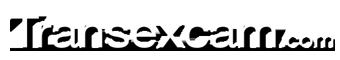 www.transexcam.com